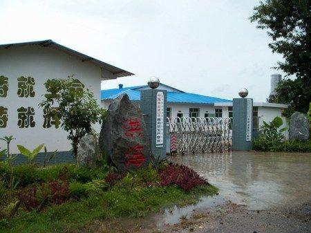 乐虎国际官方网站茶厂